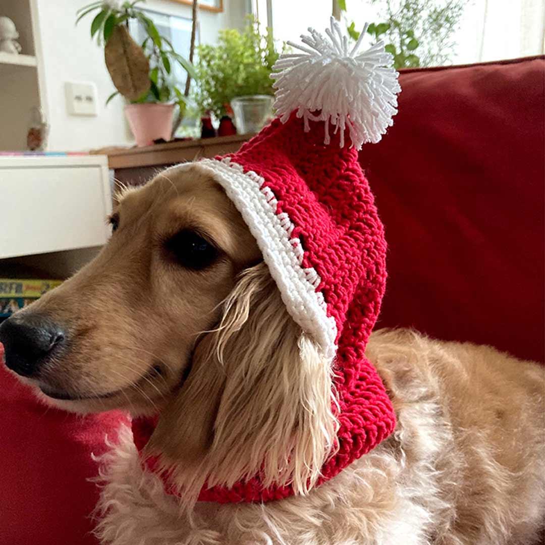 Gorro crochê para cachorro - Natal - Fio Balloon