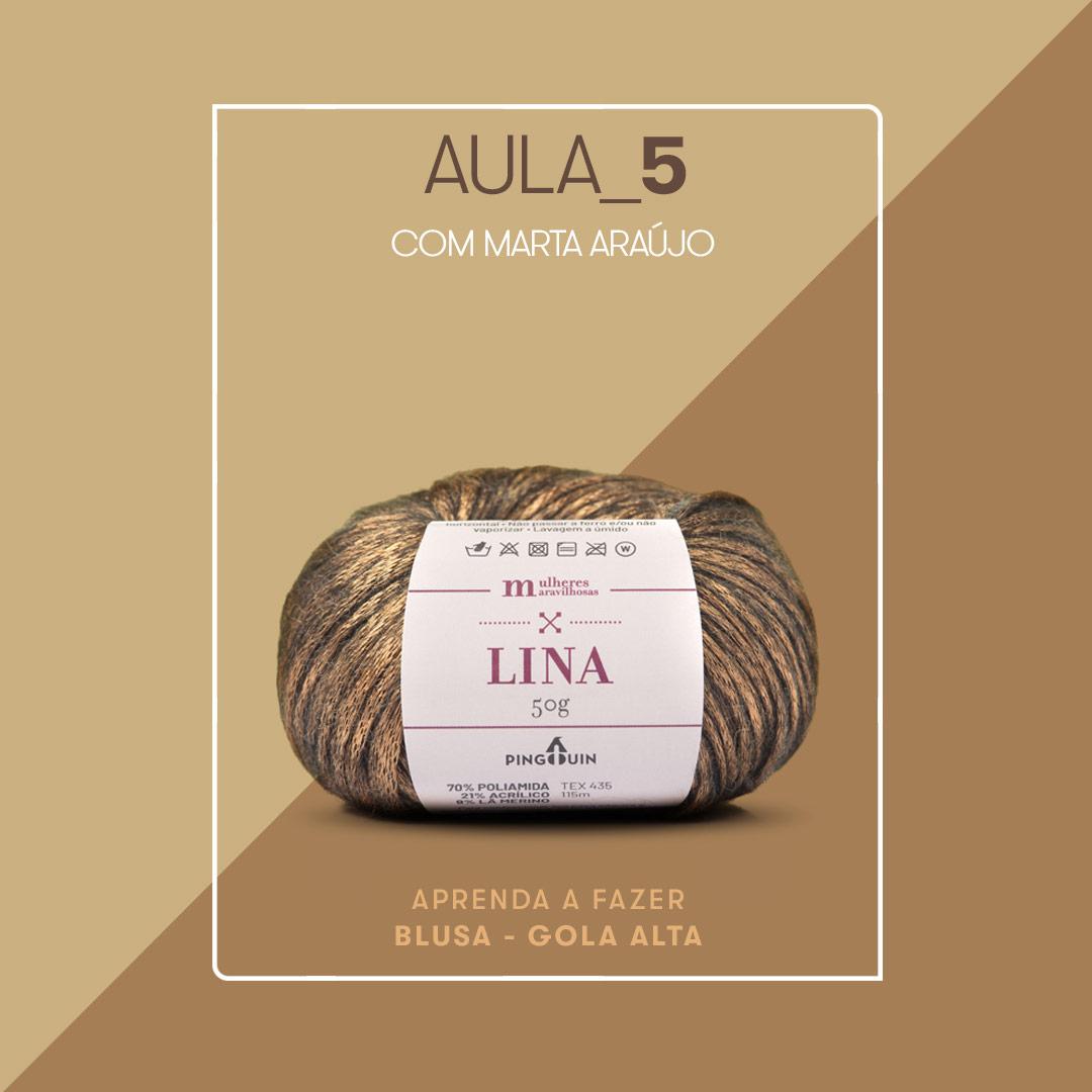 Blusa Gola Alta - Fio Lina - Aula 5